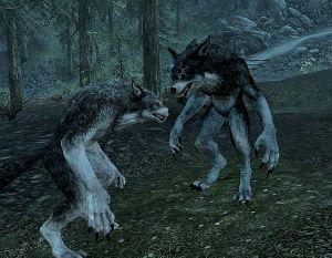 Chapter 8 - Selene and Farkas Werewolves