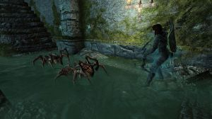 Chapter 6 - Rowan with Spiders