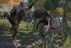 Ch 4 - Werewolf Fight